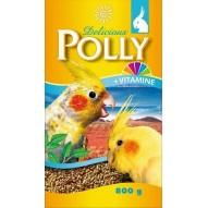 Karma dla papugi Polly 800g Vitakraft