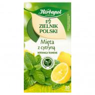 Herbapol Zielnik Polski Herbatka ziołowo-owocowa mięta z cytryną 30 g (20 x 1,5 g)
